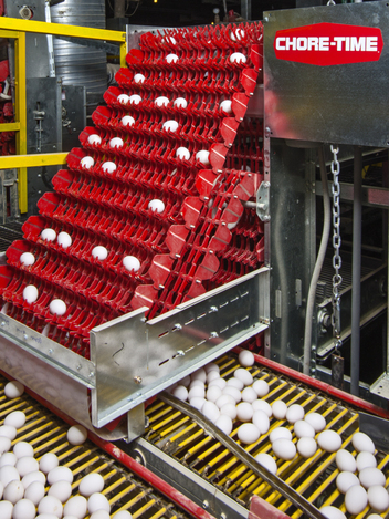 Chore-Time® EXCELSIOR® Egg Collection System