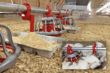 Chore-Time's E-Z START® Feeder provides a high level of feed to get birds off to a good start. Inset photo shows how the E-Z START Feeder stows neatly beside the feeder line during grow out, where is does not obstruct access to the grow-out feeding system.