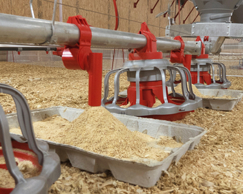 Chore-Time's E-Z START® Feeder offers a high level of feed in the starter tray to encourage perimeter eating, minimize feed contamination and aid in bird transition to round pans.