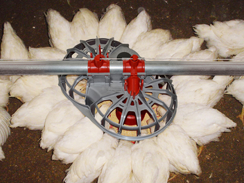 Dual feed inlets promote even feed distribution and accommodate a variety of feed types.