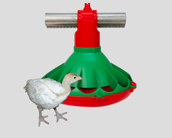 The KONAVI® Poult Feeder gives birds easy access to feed without stepping in it. (U.S. Patent Pending)
