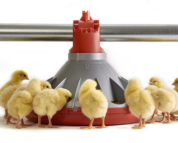 KONAVI® Broiler Feeder