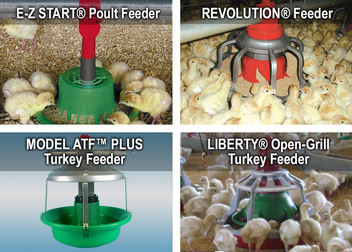 Turkey Feeders