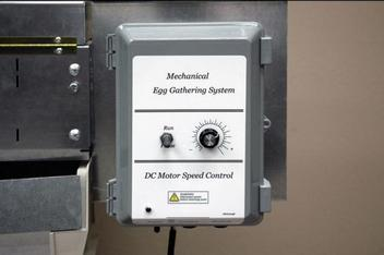 Egg flow to the table is controlled by a run/pause toggle switch and belt speed adjustment knob.
